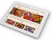 bubbly-communication-e-commerce-fleurs-2